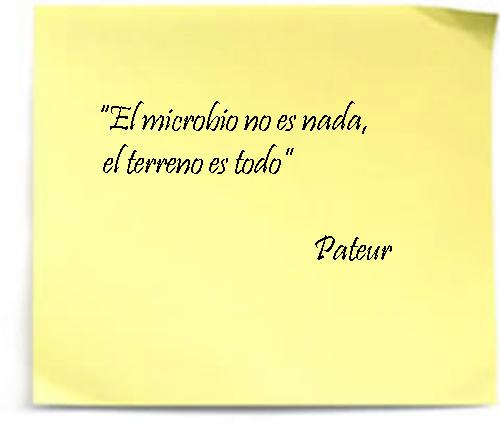 cita Pasteur